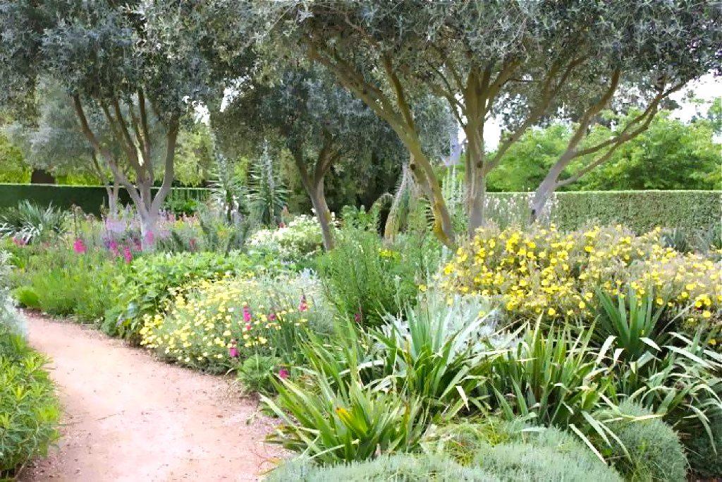 jardin-mediterraneen